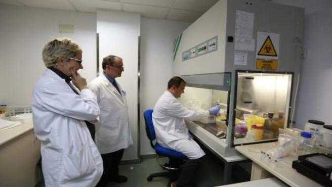 cáncer de próstata y sangre de fosfatasa ácida en