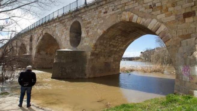 La crecida del río Duero a su paso por Zamora por el temporal de los últimos días inundó algunos paseos ribereños.