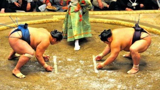 Luchadores de sumo.