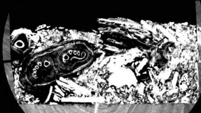 Imagen escaneada que revela la presencia de restos de una momia en un sarcófago que se creía vacío.