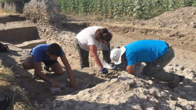 Excavaciones en la Ciudad Romana, en Duratón. Archivo
