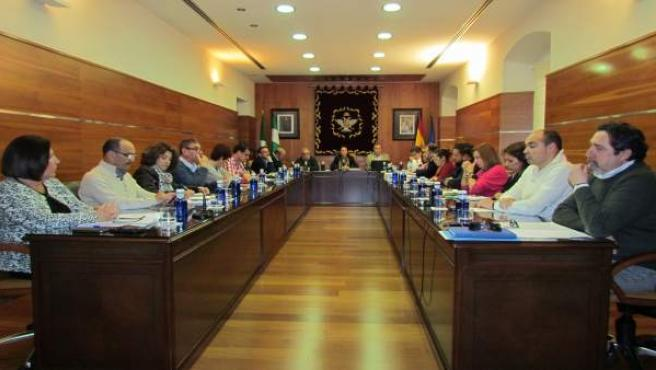Pleno en el Ayuntamiento de Alhaurín el Grande