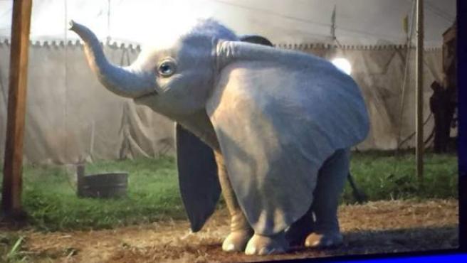 Primera imagen del Dumbo de Tim Burton.