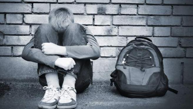 El Gobierno ha planteado un nuevo programa contra el bullying