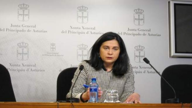 La diputada de Foro Asturias en la Junta General Carmen Fernández