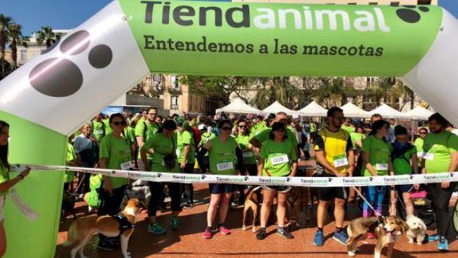 Málaga Dog Party carrera