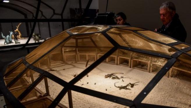 Un hombre observa El teatro del Mundo (1993), del artista Huang Yong Ping, una obra con animales e insectos vivos que se muestra en una exposición en el Guggenheim de Bilbao.