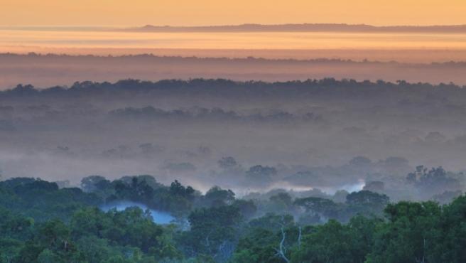 Vista del Parque Nacional Tikal de Guatemala,país que alberga 2.276 especies de flora y fauna en peligro de extinción.