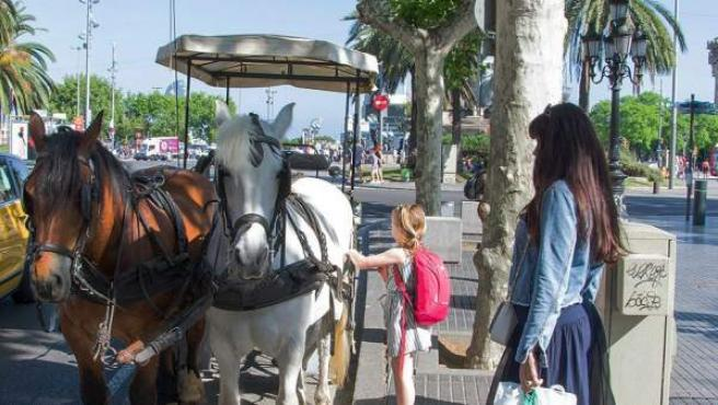 Una carroza de caballos para turistas apostada en La Rambla de Barcelona. Esta imagen deja de ser parte del paisaje urbano de la capital catalana.