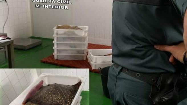 [Grupovigo] Remitiendo Notas De Prensa Comandancia Guardia Civil Pontevedra
