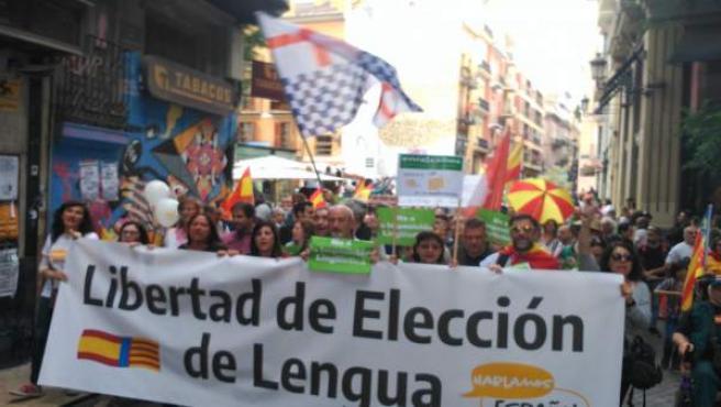 Manifestación por la 'libertad lingüística'