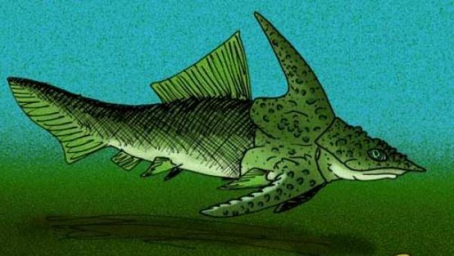 Reconstrucción de 'Brindabellaspis stensioi', el prehistórico 'pez-ornitorrinco' australiano.