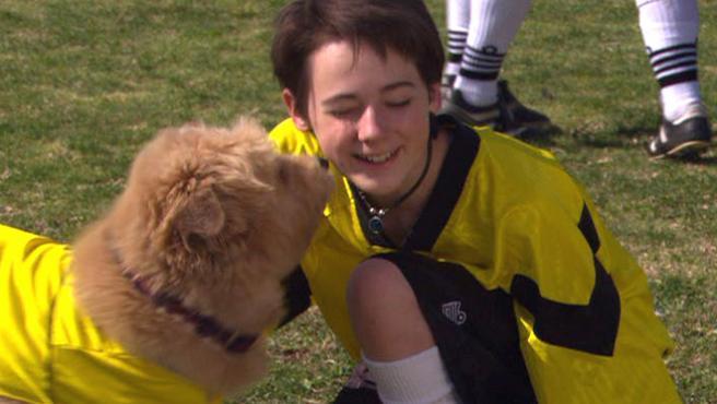 El mundial más chungo: películas de perros que juegan al fútbol