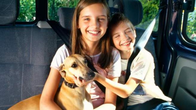 Unos niños acarician a su perro en un coche.