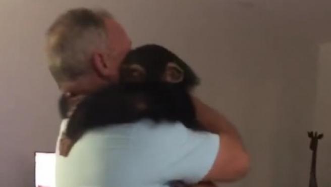 Limbani abrazando a su cuidador tras dos meses sin verlo.