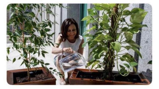 Imagen del tuit eliminado por el Ministerio de Defensa que muestra a Margarita Robles regando unas plantas.