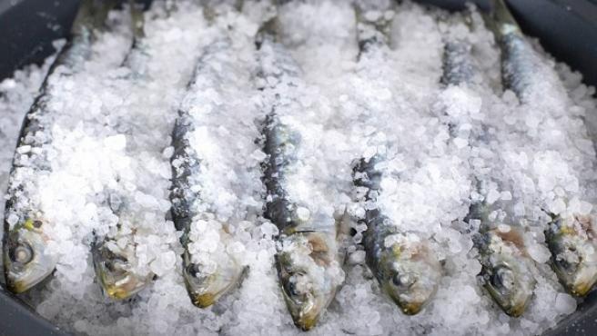 Sardinas a la sal