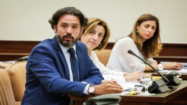 Guillermo Mariscal, durante una comisión en el Congreso de los Diputados