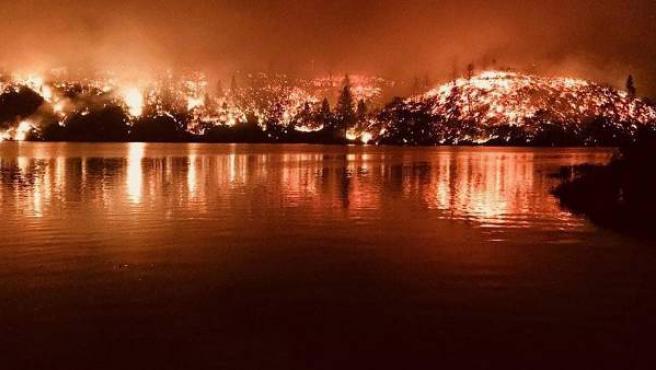 Árboles consumidos por las llamas durante los incendios en California (EE UU), cerca de la localidad de Whiskeytown.