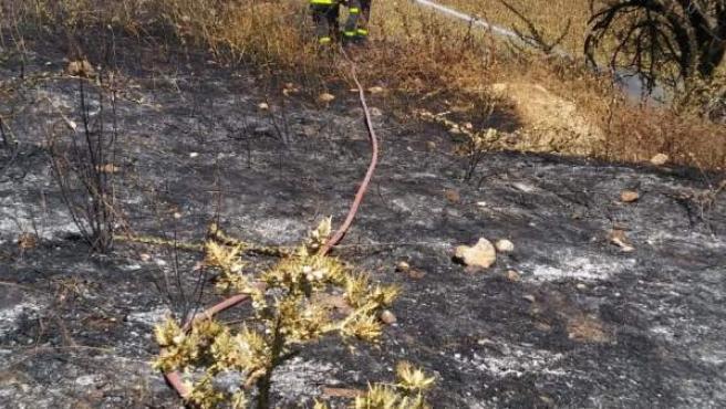 Incendio de pasto cerca de Espera (Cádiz)