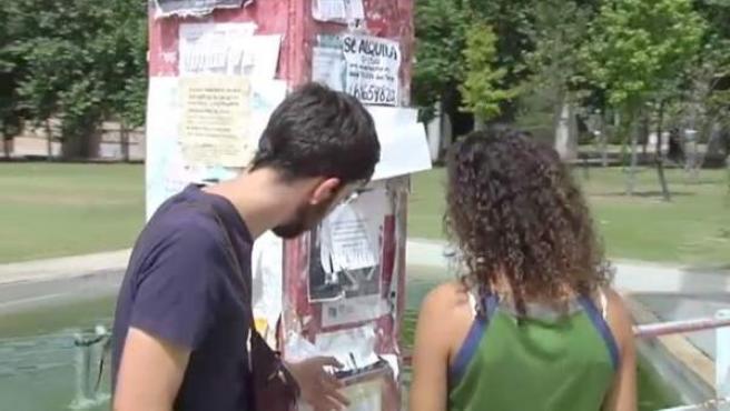Dos universitarios buscan piso de estudiantes para compartir el próximo curso.