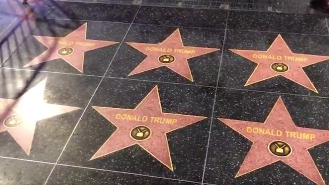 Vídeo del día: llenan Hollywood de estrellas de Donald Trump