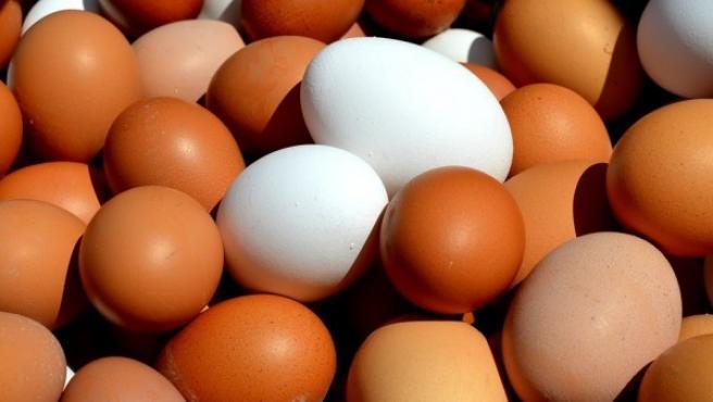 Huevos de gallina