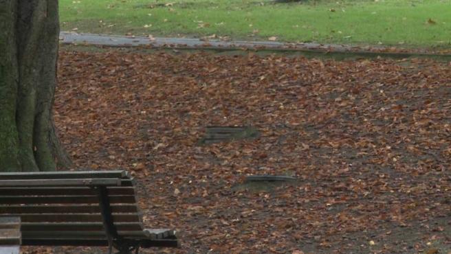 AEMET espera un otoño más cálido de lo normal