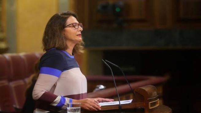 La portavoz adjunta del GPP, Isabel Borrego, en el Congreso