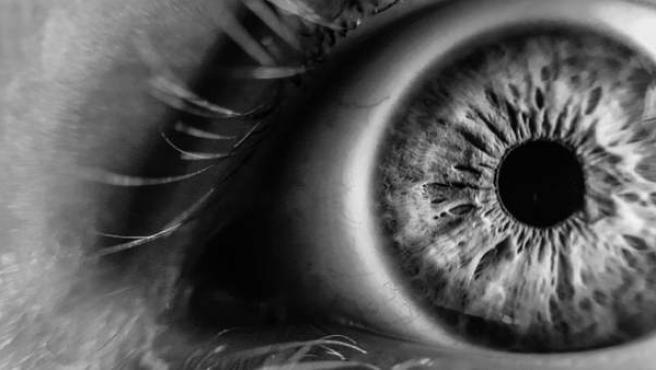 Un ojo humano.
