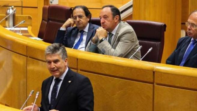 Ignacio Cosidó, portavoz del PP en el Senado.