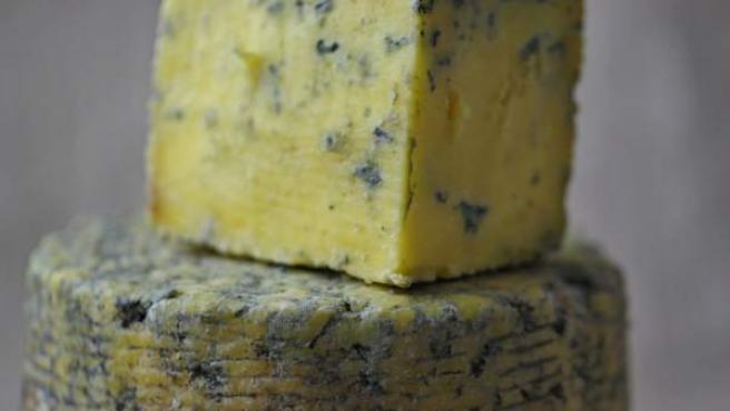 Dos pieza de queso con moho azul.