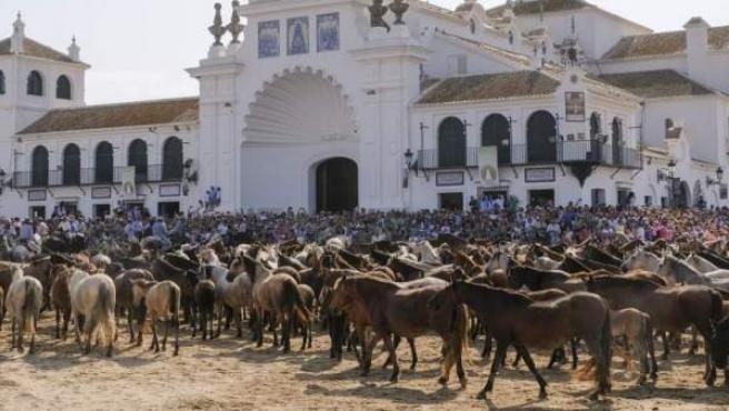 Imagen de archivo de la Saca de las Yeguas en la aldea del Rocío, en Almonte, Huelva.
