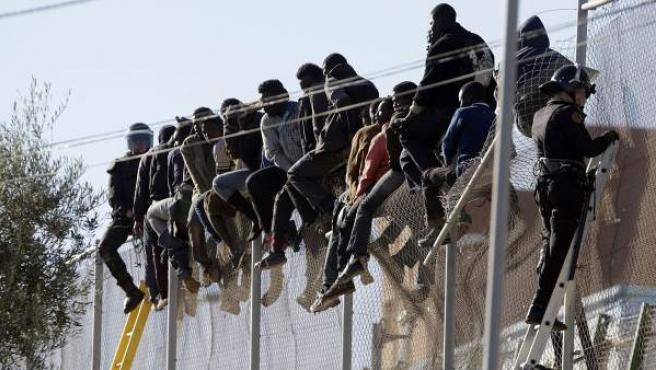 Un grupo de inmigrantes, encaramado a la valla que separa Melilla de Marruecos.