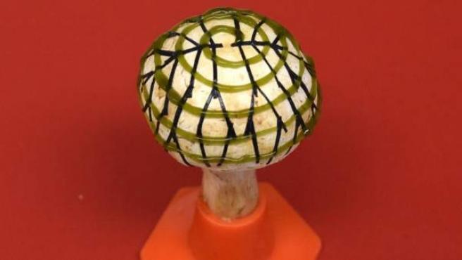 Una red de electrodos (en forma ramificada) y cianobacterias (en espiral), impresas en 3D sobre un hongo para producir bioelectricidad.