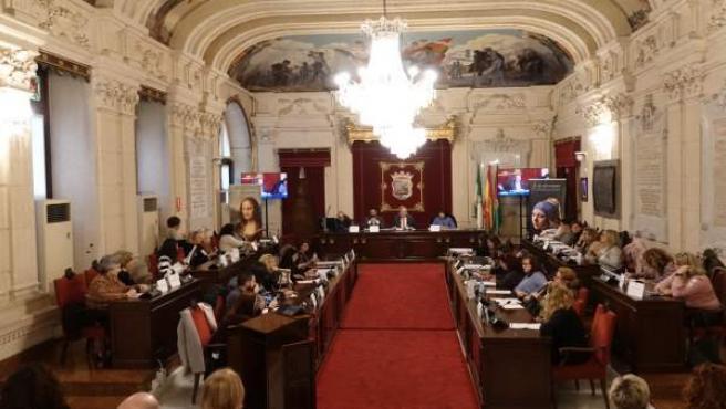 Consejo sectorial de las mujeres de Málaga