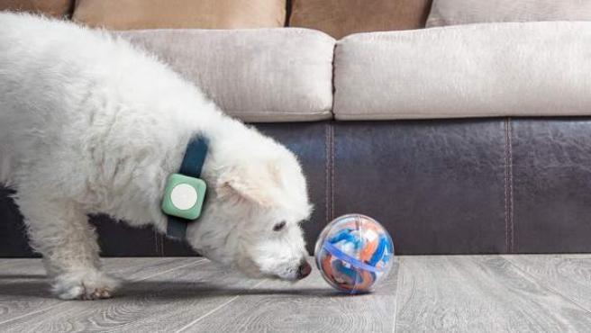 Universall, el 'gadget' que convierte en inteligente cualquier objeto cotidiano.