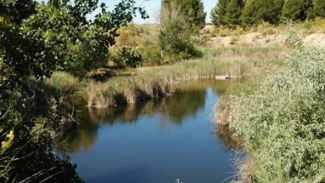 Lagunas de Horna, en Perales del Río (Getafe).