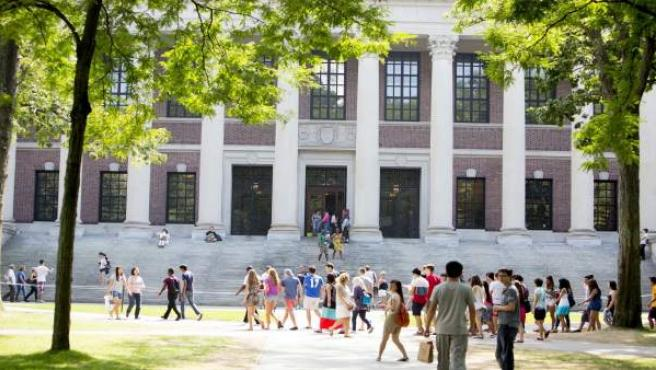Universidad de Harvard.