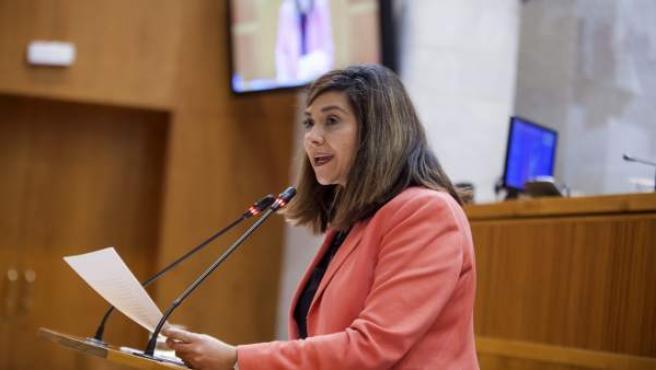 La portavoz de Cs, Susana Gaspar