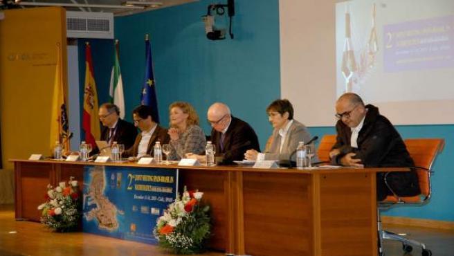 Mesa presidencial II encuentro matemático Brasil-España