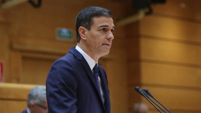 Pedro Sánchez comparece en el pleno del Senado.