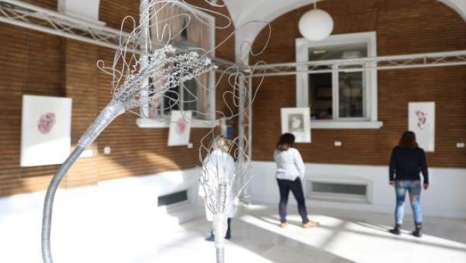 Exposición 'Flores en el Corazón' del Hospital Virgen del Rocío