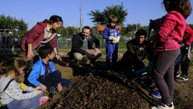 Niños en el campamentos de huertos urbanos