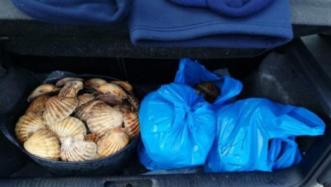 Tres detenidos en un operativo contra el furtivismo en la zona de Ferrol.