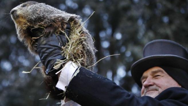 La marmota Phil este sábado durante la celebración del tradicional Día de la Marmota en Pensilvania.