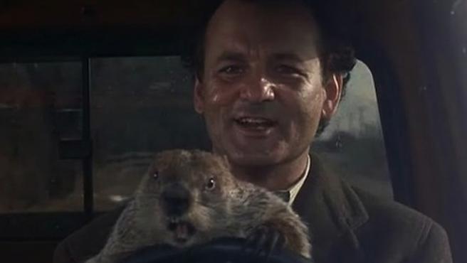 Hoy es el Día de la Marmota