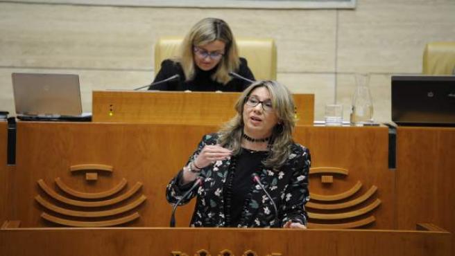 La portavoz del PP en la Asamblea, Cristina Teniente