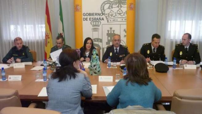 Comisión de seguimiento del Plan Director para la convivencia y mejora de la seg