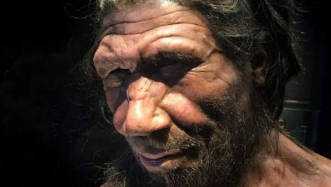 <p>Aspecto de varón neandertal</p>